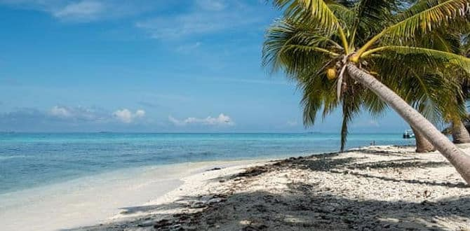 Why travel to Belize