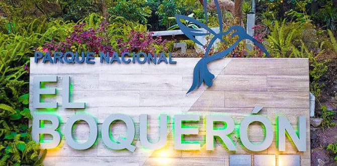 El Boqueron National Park